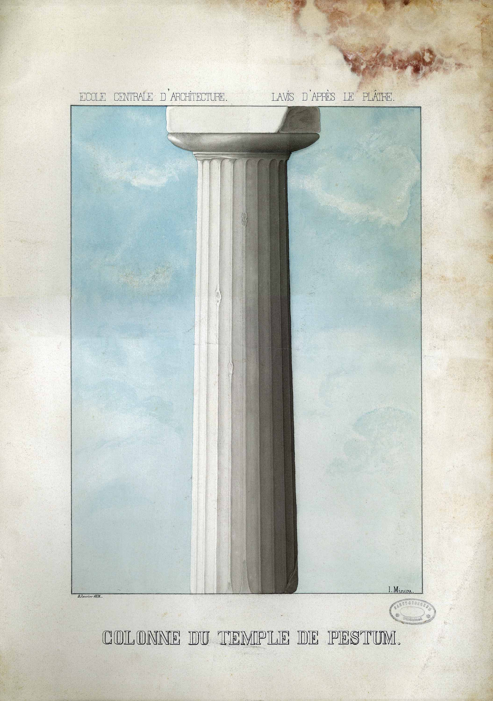 Collone de Temple de Pestum