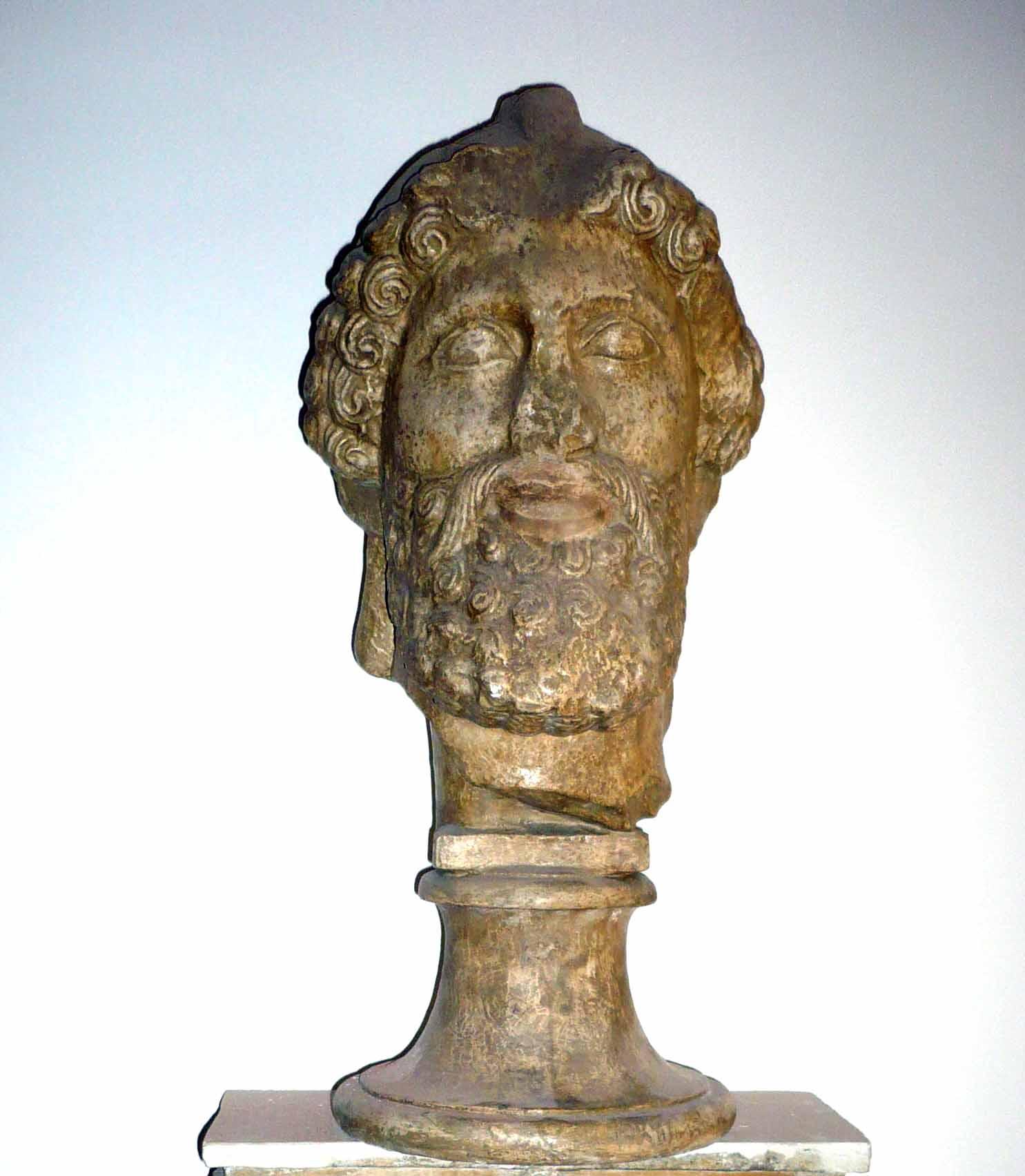 Cap de fenician (Copie în gips realizată în Muzeul Luvru)